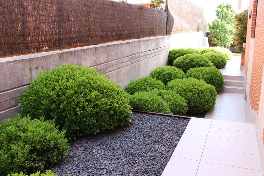 jardines sin mantenimiento consigue un jard n pr ctico y On diseno jardines sin mantenimiento